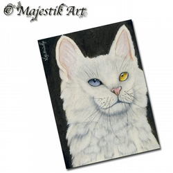 ACEO Print White Cat Kitten Feline Pet Animal RAINBOW