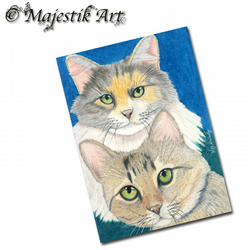 ACEO Print Cat Feline Tabby Maine Coon Pet SISTER LOVE