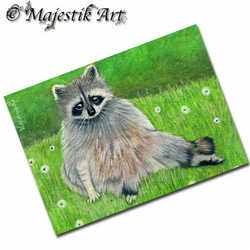ACEO Print Raccoon Wildlife Flowers Animal LAZY DAYS