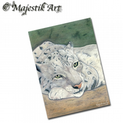 ACEO Print Snow Leopard Animal Feline Big Cat REFLECTION