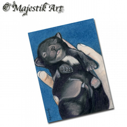 ACEO Print Chihuahua Pet Puppy Animal Dog NEW LIFE