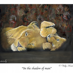 "Lion Cub Fine art Print 8"" x 10"" Archival IN THE SHADOW OF MAN Wildlife"