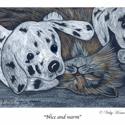 Tabby Cat Fine art Print A4 Archival NICE AND WARM Animal