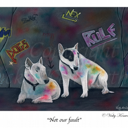 Bull Terrier Fine art Print A4 Archival NOT OUR FAULT Dog