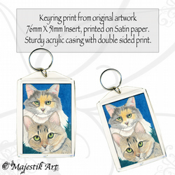 Maine Coon Keyring SISTER LOVE Cat Animal Tabby