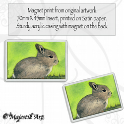 Rabbit Magnet HOP Bunny Animal