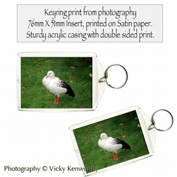 Goose Keyring Photography by VK
