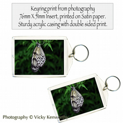 Butterfly Keyring Photography by VK