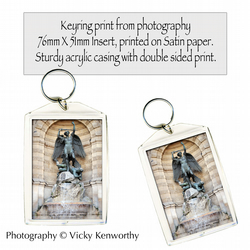 Statue Keyring Photography by VK