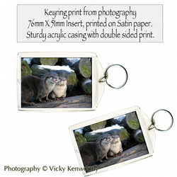 Otters Keyring Photography by VK