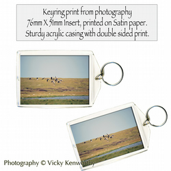 Geese Keyring Photography by VK