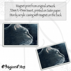 Black Cat Magnet INCANDESCENT Feline VK