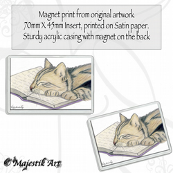 Tabby Cat Magnet LOVE TO READ Animal VK