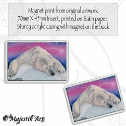 Polar Bear Magnet RESTING Wildlife VK
