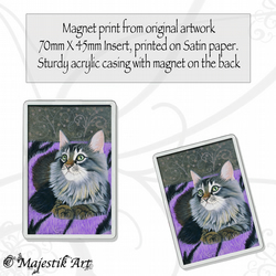 Maine Coon Magnet TOO COSY Cat VK