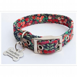 Celia XSmall Dog Collar