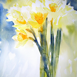 Daffodils original floral watercolour painting yellow flowers
