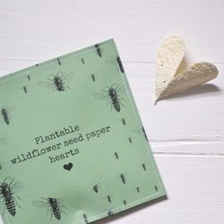 Pack Of 10 Wildflower Seed Paper Hearts