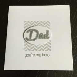 Dad - You're my hero