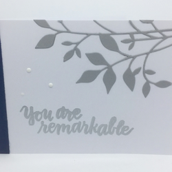 You Are Remarkable