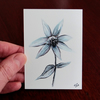 Flower Sketch Card ACEO