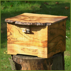 Jewellery box  - Mother Nature's magical wood