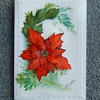 hand painted poinsettia card (ref 708)