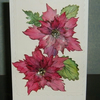 greetings card poinsettia original (ref 722)