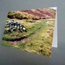 Mind How You Go - Greetings Card - Pack of 5 - Limited Edition