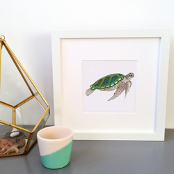 'Turtle' Framed Print