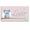 Pink and Blue Owl Personalised Door Sign