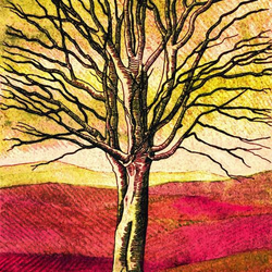 Golden Tree - Fine Art Print