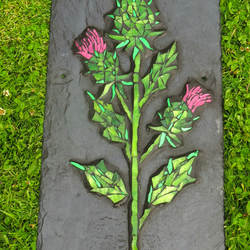 Scottish Thistle on Slate
