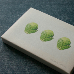 Botanical Box Canvas Print 'Three Brussels Sprouts'.