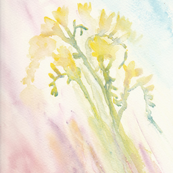 Greetings Card - The Sweet Fragrance - Watercolour