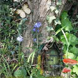 Fairy door with Flowers Greeting Card