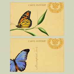 VINTAGE STYLE BUTTERFLIES POSTCARDS