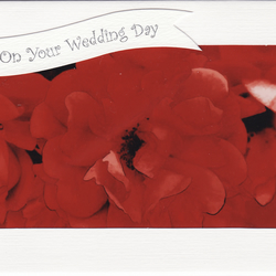 SALE - Unusual Photo On Your Wedding Day Card - Rose in Red
