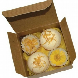 Orchard Fruits Handmade Bath Bomb & Melts gift set