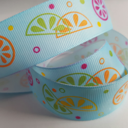 1m Ribbon - Printed Grosgrain - 25mm - Fruity - Blue