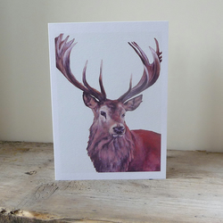 Stag Card