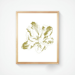 Parrot Tulip in Gold Ink - Handmade