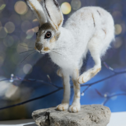 Snow Hare - leaping, needle felted, one of a kind