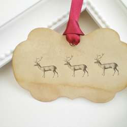 Christmas Gift Tags With Reindeer - Set Of Three