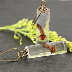 Real Dried Cloves Resin Earrings Christmas Spices Cylinder Dangle Long Botanical