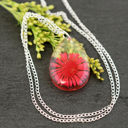 Real Dried Pink Daisy Resin Pendant Necklace Wildflowers Pressed Daisies Flowers