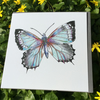 Single blue butterfly greeting card