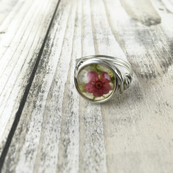 Real flower ring-sterling silver-realmoss ring-terrarium ring-terrarium jewelry