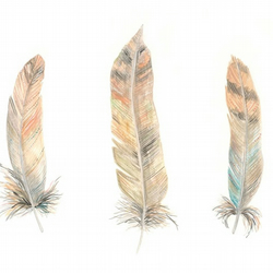 Three feathers watercolour art print A4