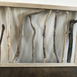 Framed driftwood 'forest'